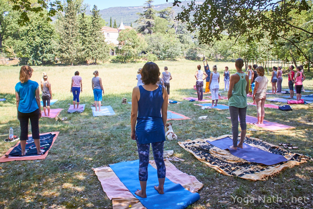 Stage Formation de Yoga