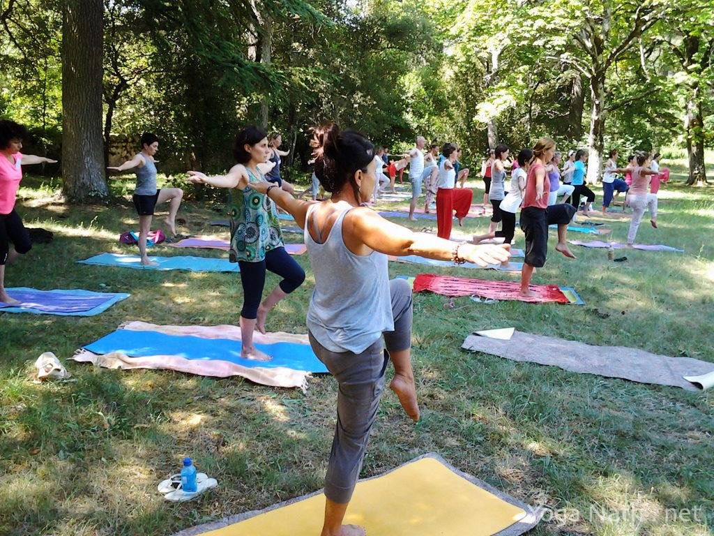 Formation professeur de yoga